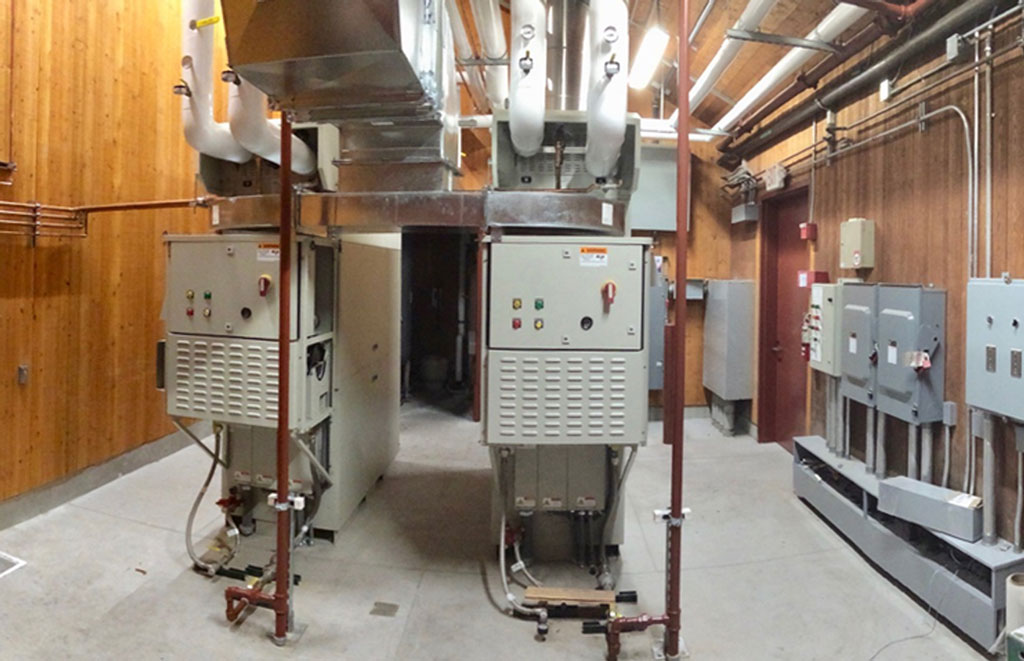Cogeneration at Wineries